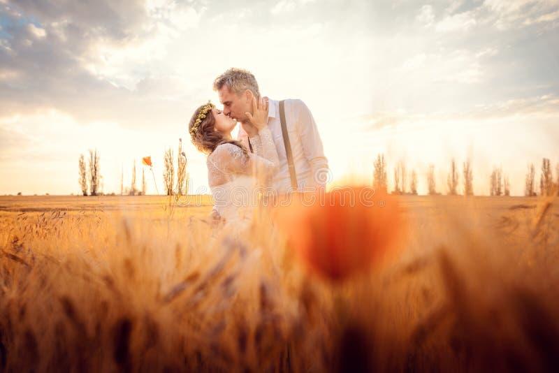 Brölloppar som kysser i romantisk inställning på ett vetefält royaltyfria foton