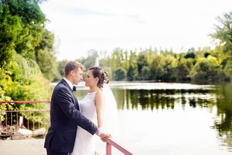 Bröllopperiod i parkera royaltyfria foton