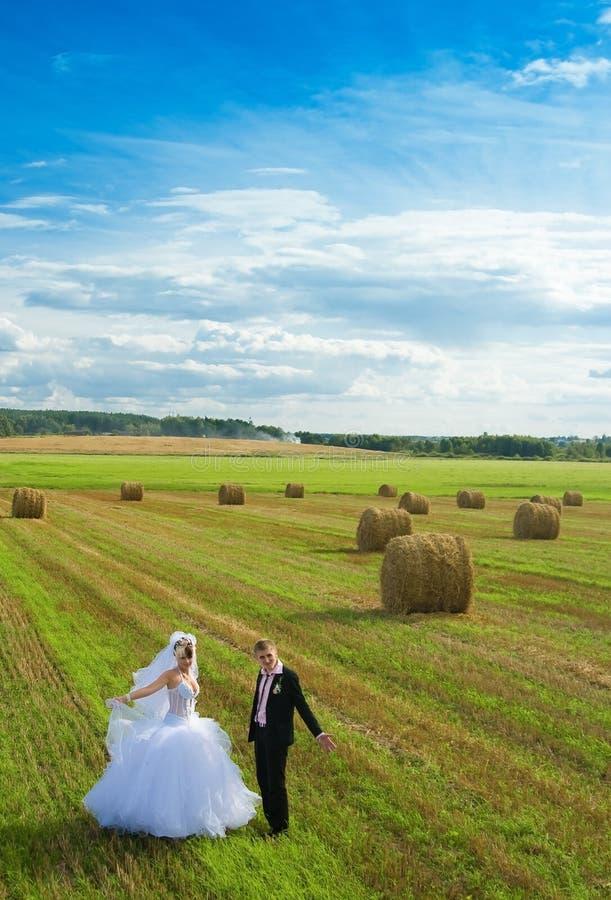 bröllopsresa royaltyfria foton