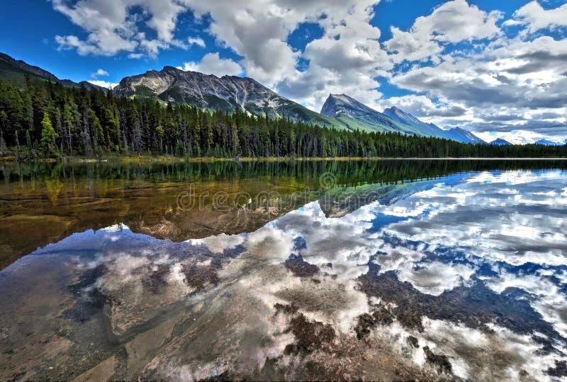 Bröllopsresa sjö surronded av skogen och berg royaltyfri fotografi