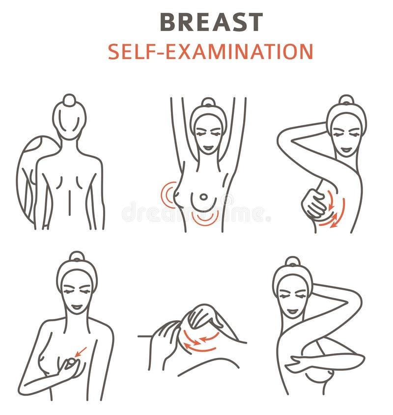 Bröstcancer infographic läkarundersökning Självprövning Kvinna` s vektor illustrationer