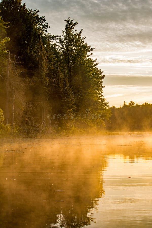 Brûlures d'or de lumière du soleil de début de la matinée par la brume de la rivière photos libres de droits