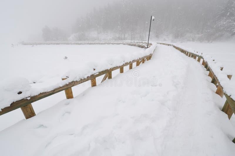 Brücke über Abant Lake-3 lizenzfreies stockbild