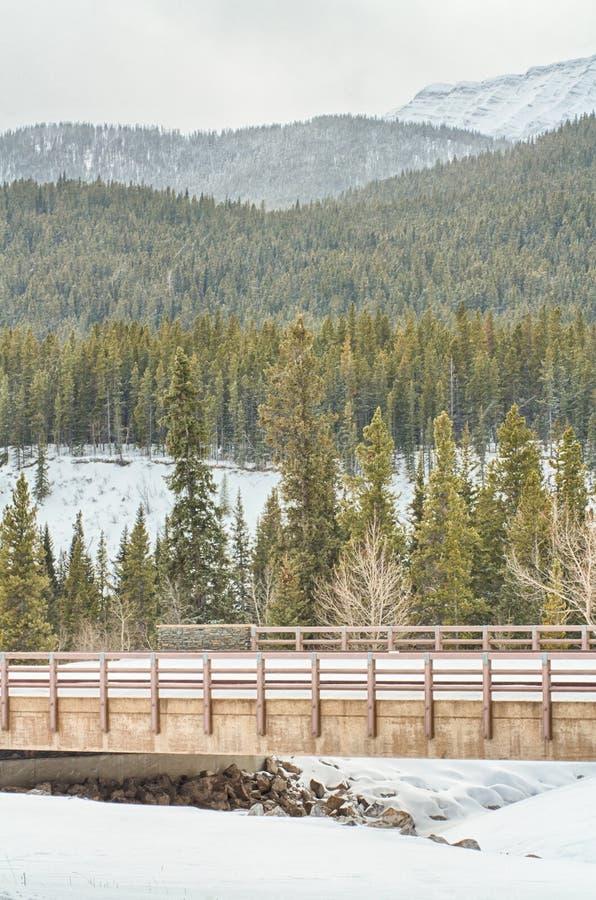 Brücke über Cat Creek lizenzfreies stockbild