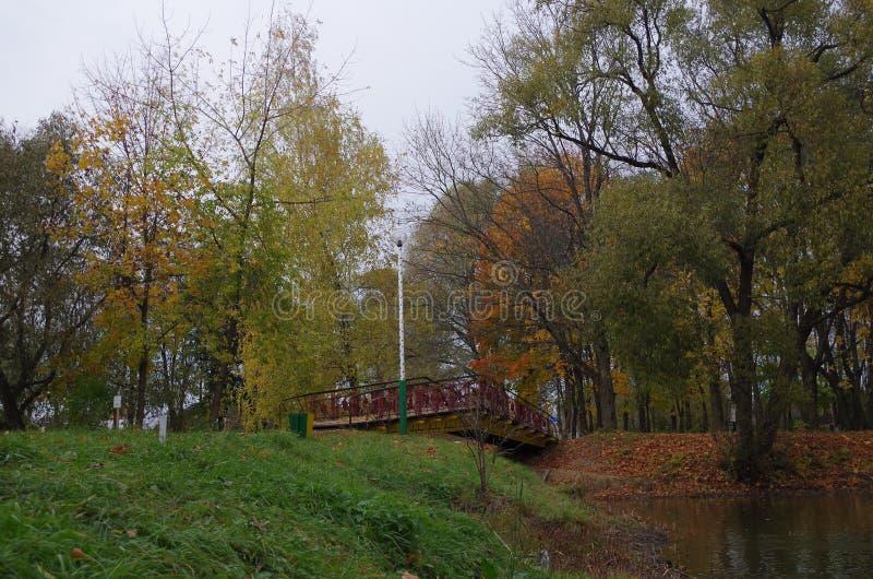 Brücke über dem Teich lizenzfreie stockfotografie