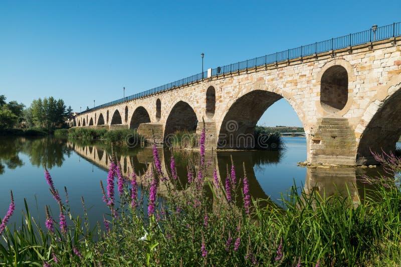 Brücke über Duero-Fluss in Zamora, Spanien lizenzfreies stockbild