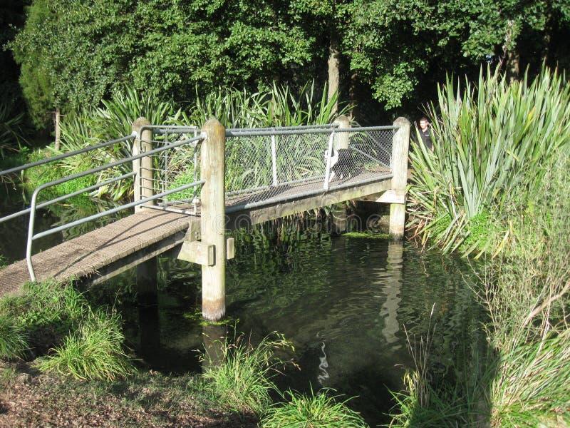 Brücke über schlammigem Wasser lizenzfreie stockfotografie