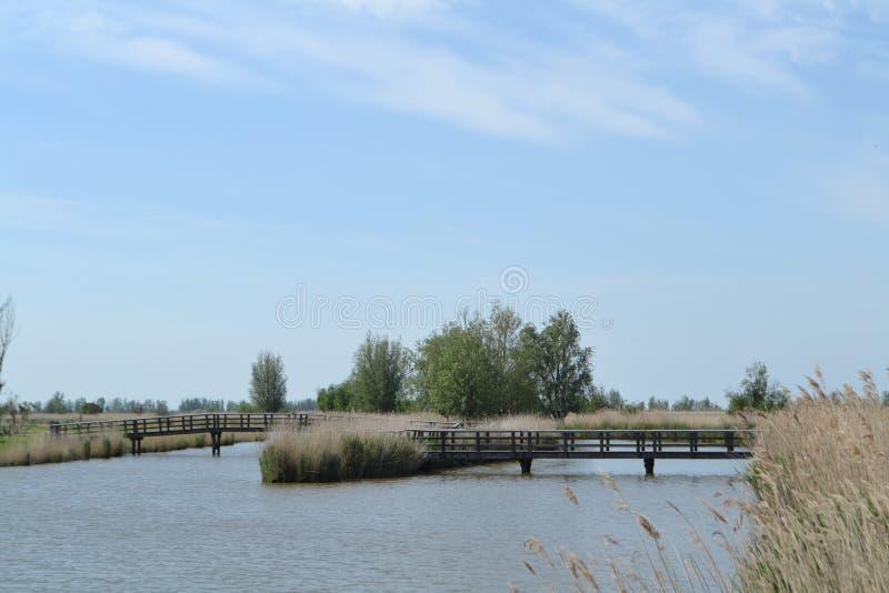 Brücke des Nebenflusses in der niederländischen Naturlandschaft lizenzfreie stockbilder