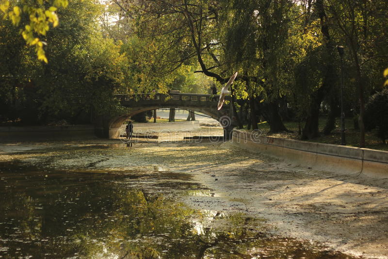 Brücke in einem Park stockbild