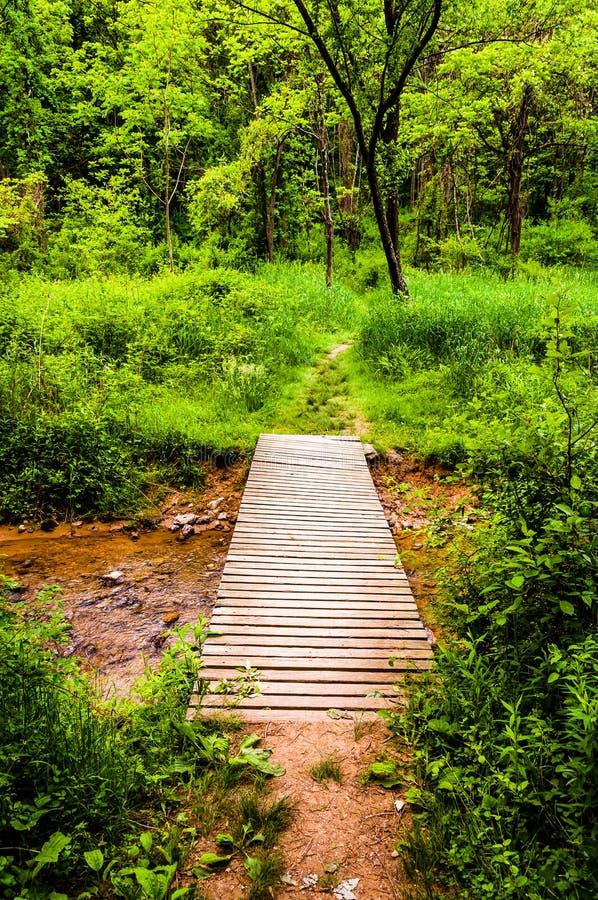 Brücke entlang einer Spur in einem üppigen Wald im Codorus-Nationalpark, Stift lizenzfreie stockfotografie