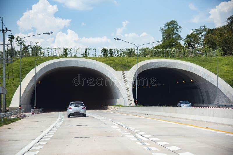 Brücke für Tiere über einer LandstraßenWaldweg-Tunnelverkehrs-Autogeschwindigkeit auf Straße stockfotografie