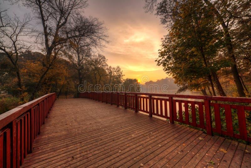 Brücke im Park lizenzfreies stockbild