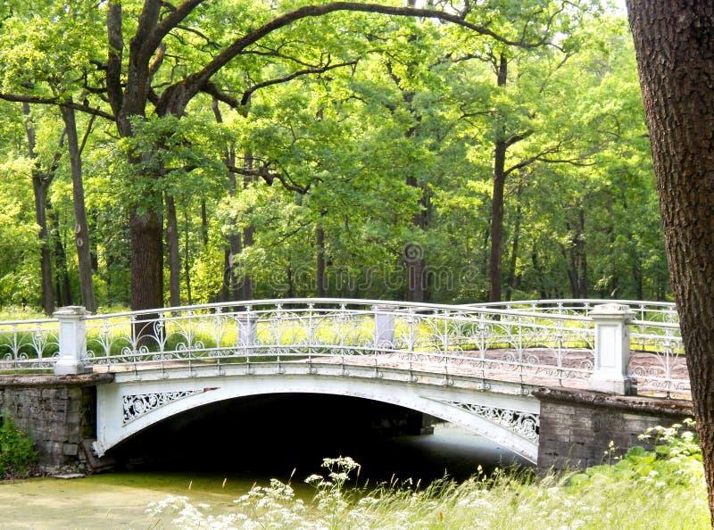 Brücke im Pavlovsk-Park stockfotos