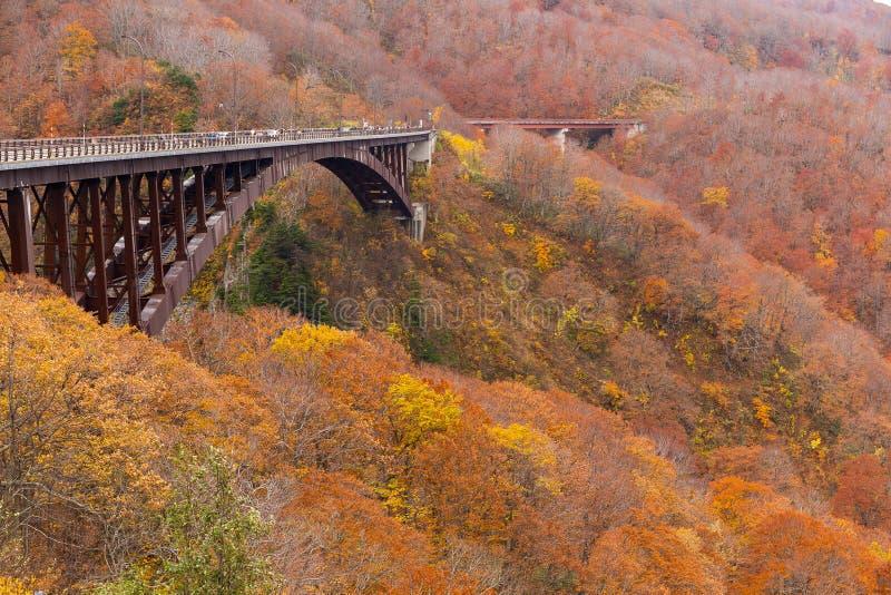 Brücke Jogakura Ohashi im Herbst stockbild
