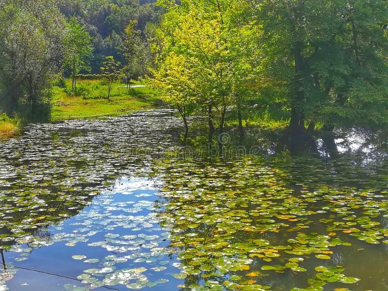 Brücke zum Garten Eden über dem Fluss von Träumen lizenzfreie stockfotos