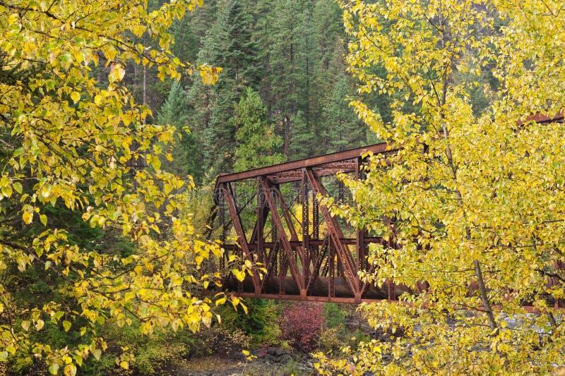Brücke zwischen gelben Bäumen stockbild
