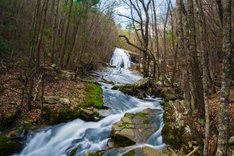 Brüllen Laufwasserfall (Oberleder-Fälle), Virginia, USA lizenzfreie stockfotografie