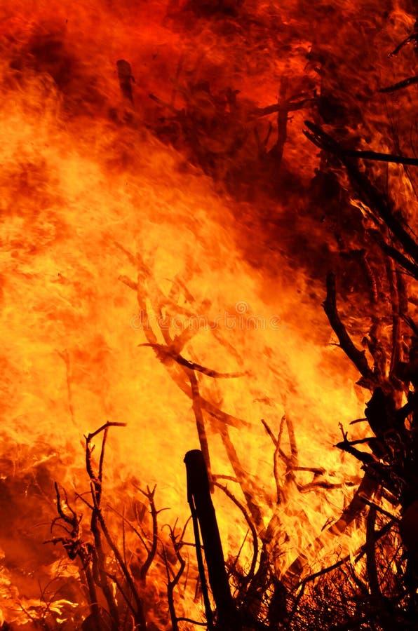 Brüllenflammen von heraus steuern verheerendes Feuer in der Nacht stockbilder