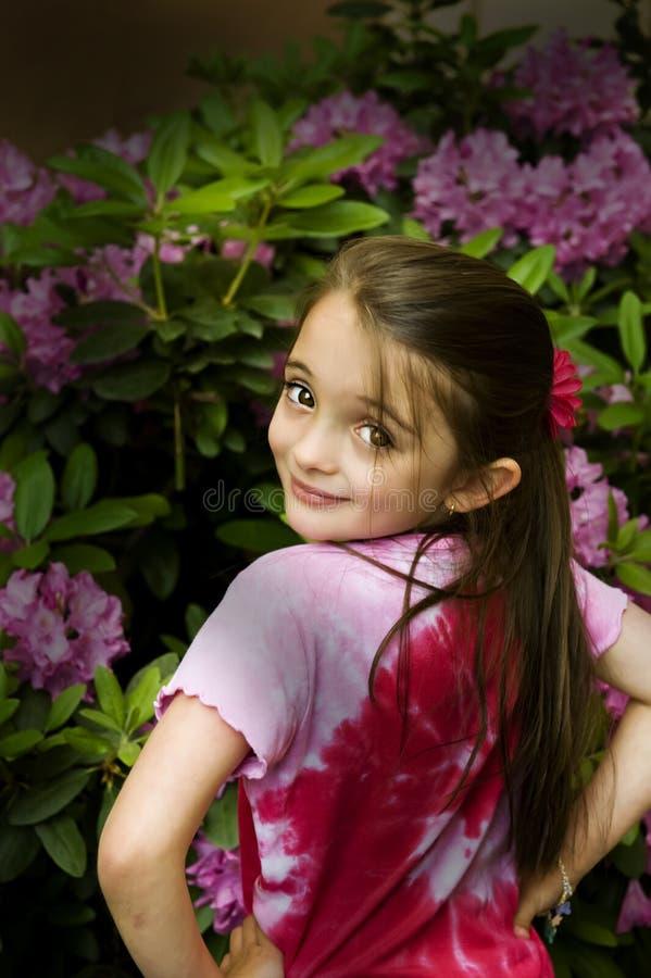 brąz przyglądać się dziewczyny fotografia royalty free