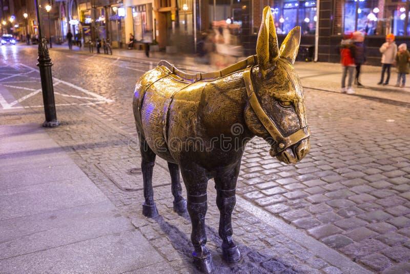 Brązowy zabytek osioł w ulicie Toruński przy nocą, Polska fotografia stock