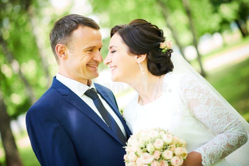 br?llop brudgum- eller fianceståenden med bruden parkerar in arkivbild