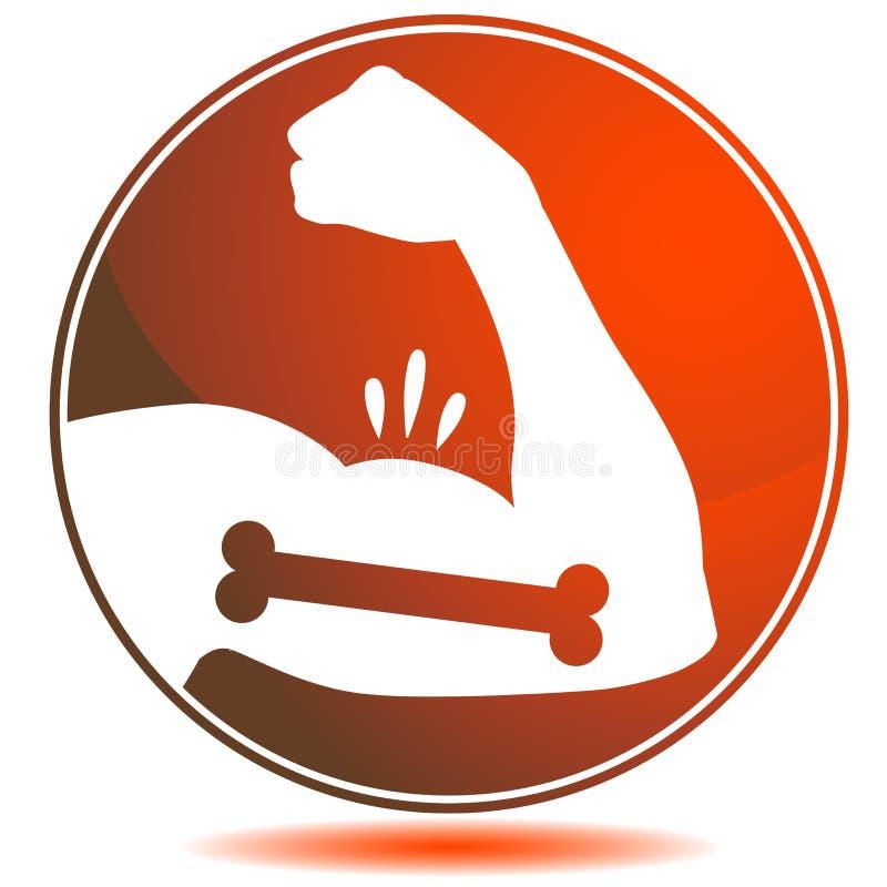 Braço masculino dos ossos fortes dos músculos que dobra o bíceps ilustração royalty free