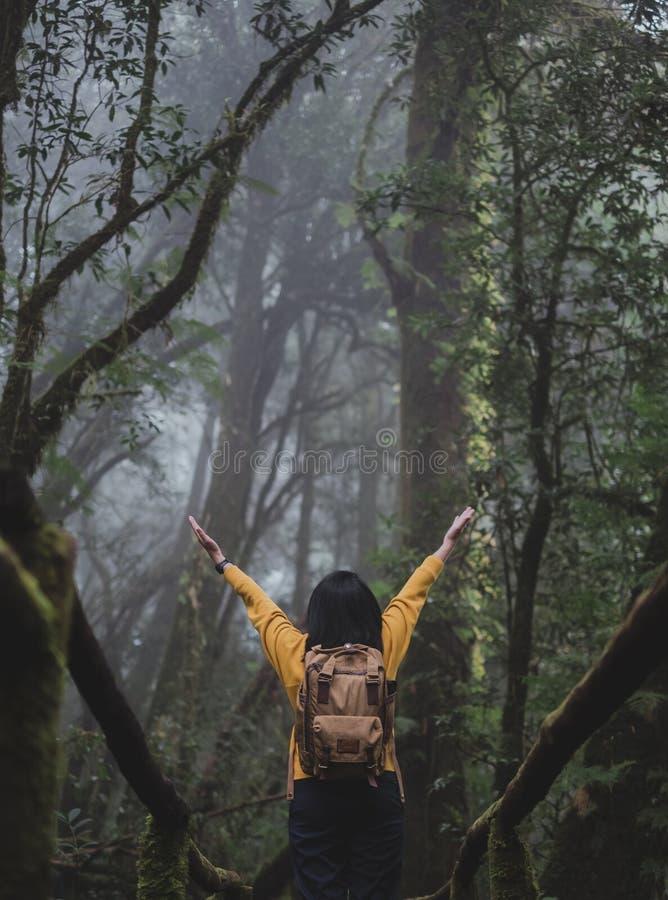 Braços asiáticos do mochileiro da mulher acima em mais foerest em fugas naturais, feriado das férias na floresta tropical fotos de stock royalty free