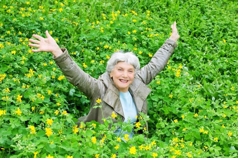 Braços de assento da mulher idosa bonita feliz estendido em uma clareira de flores amarelas na mola imagem de stock