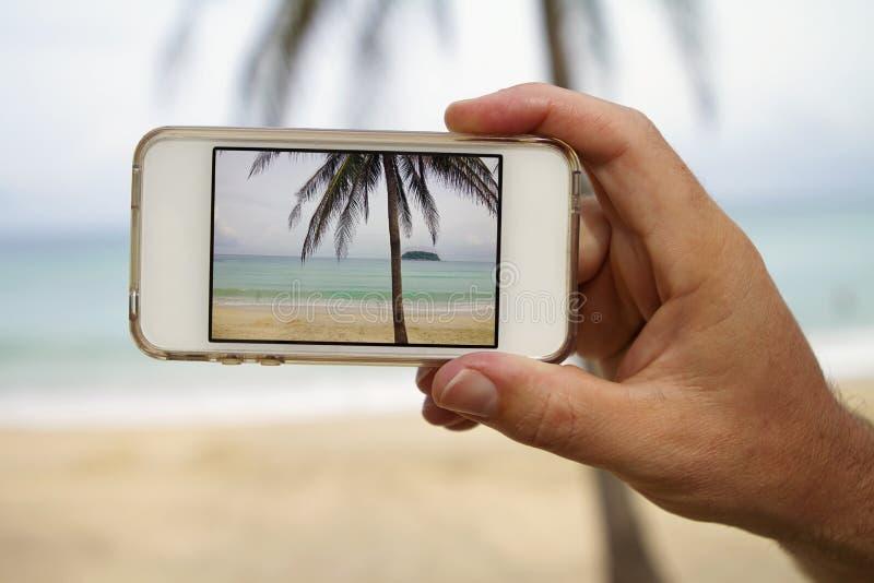 Brać fotografię drzewko palmowe z mobilnym telefonem komórkowym fotografia stock