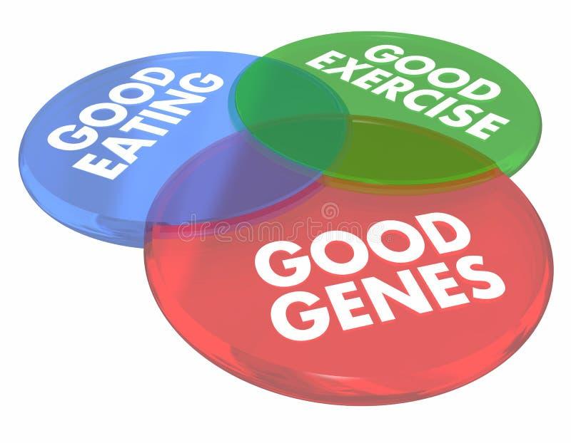 Bra gener som äter bosatt långt liv vård- Venn Diagram 3d Illust stock illustrationer