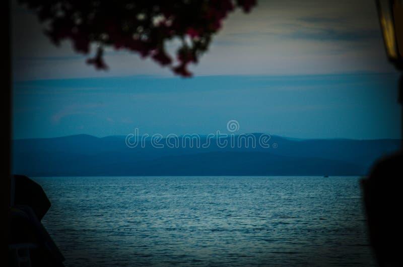Brac-Insel, Bäume und Blätter, Makarska Riviera, Dalmatien, kroatisch lizenzfreie stockfotografie