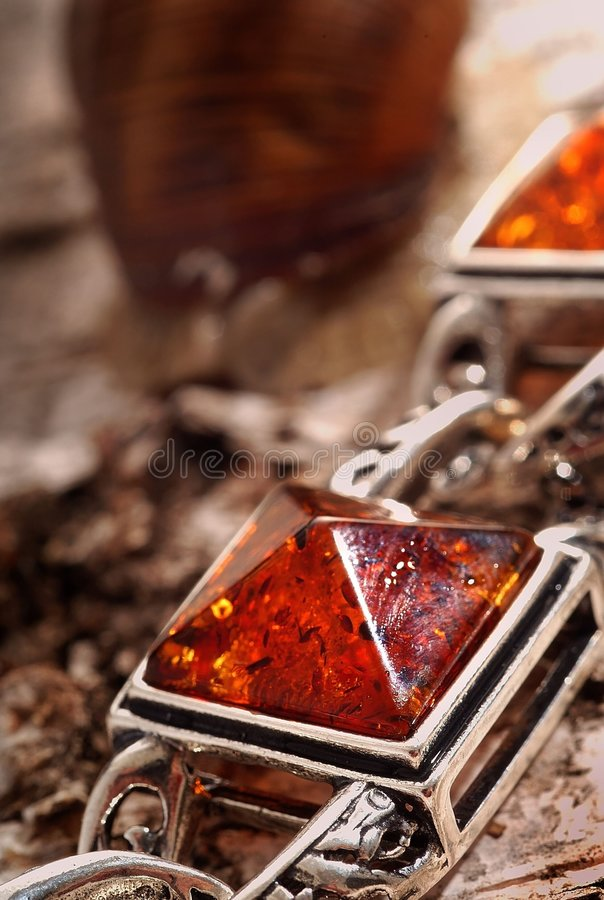 Braccialetto ambrato sulla corteccia dell'albero fotografie stock
