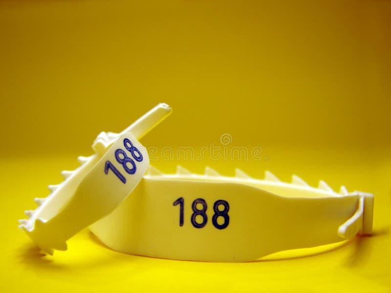 Bracelet d'identification photographie stock