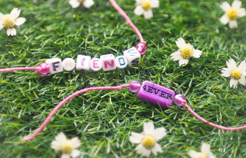 Bracelet de l'amitié deux sur l'herbe photos libres de droits