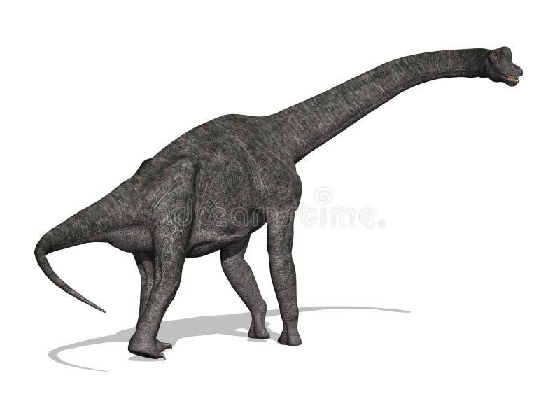 brachiosaurus恐龙 库存例证