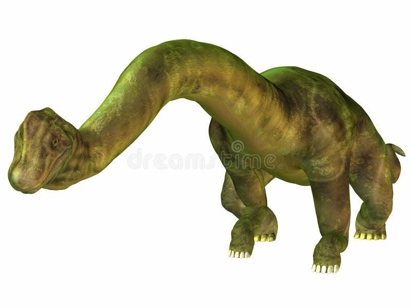 Brachiosaurus illustration stock
