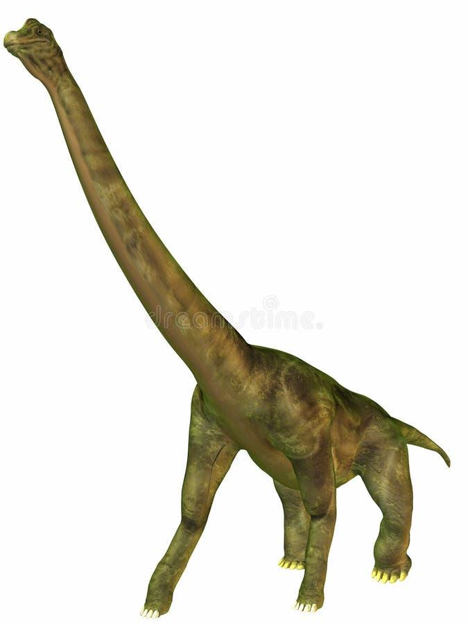 Brachiosaurus ilustração stock
