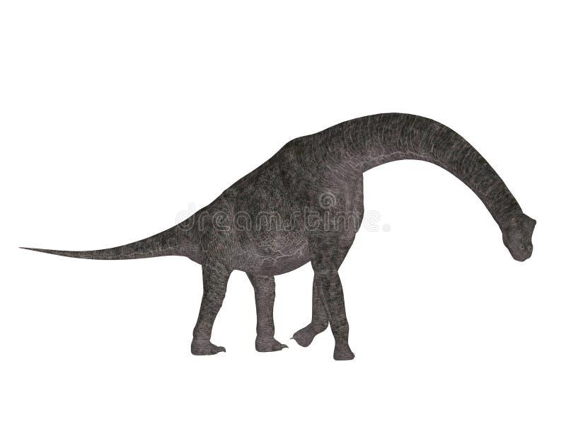 brachiosaurus vektor illustrationer