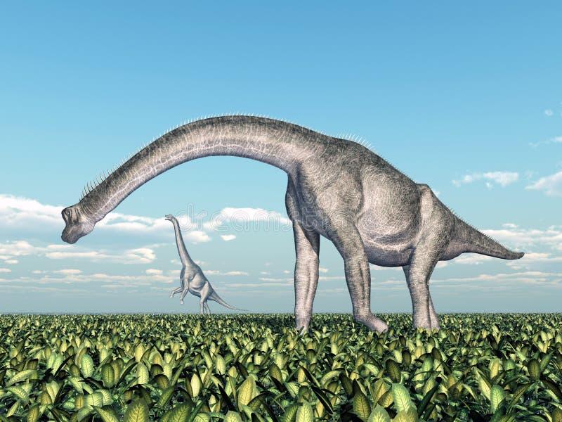 Brachiosaurus de dinosaure illustration stock