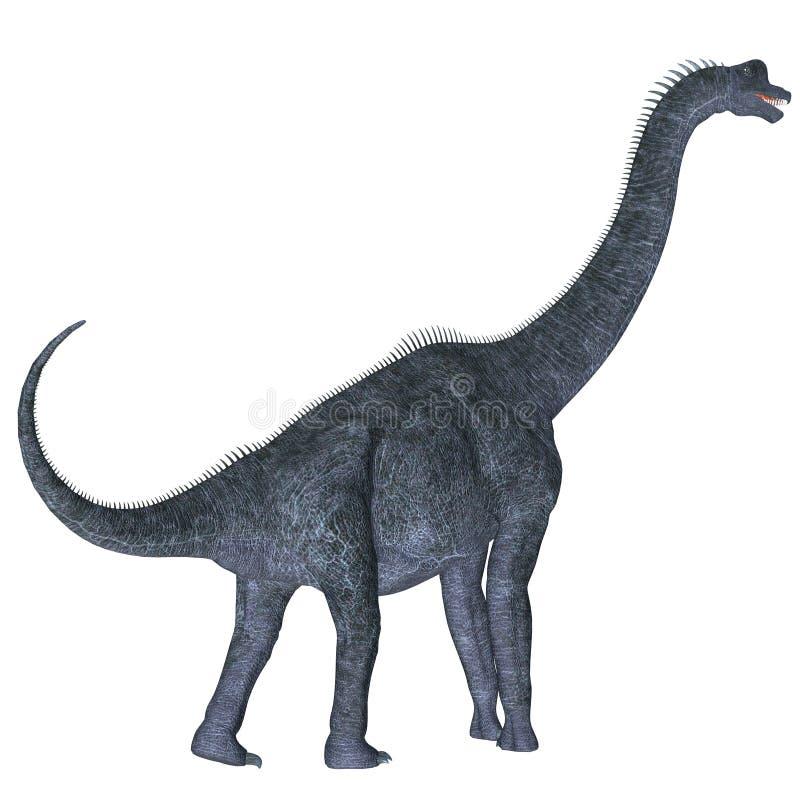Brachiosaurus over Wit stock illustratie