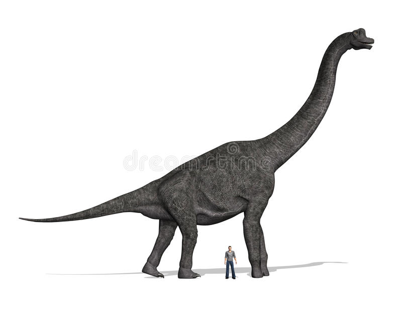 Brachiosaurus Size Compared to Man vector illustration