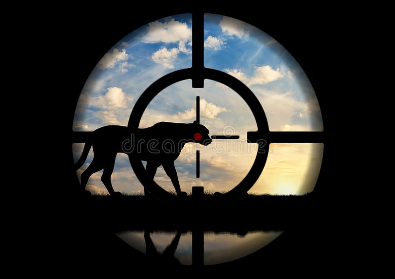 Braconnier de canon du pistolet de léopard image libre de droits