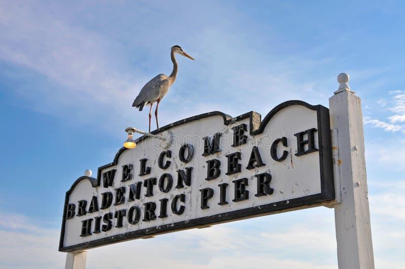 Bradenton海滩历史的码头标志 免版税库存照片