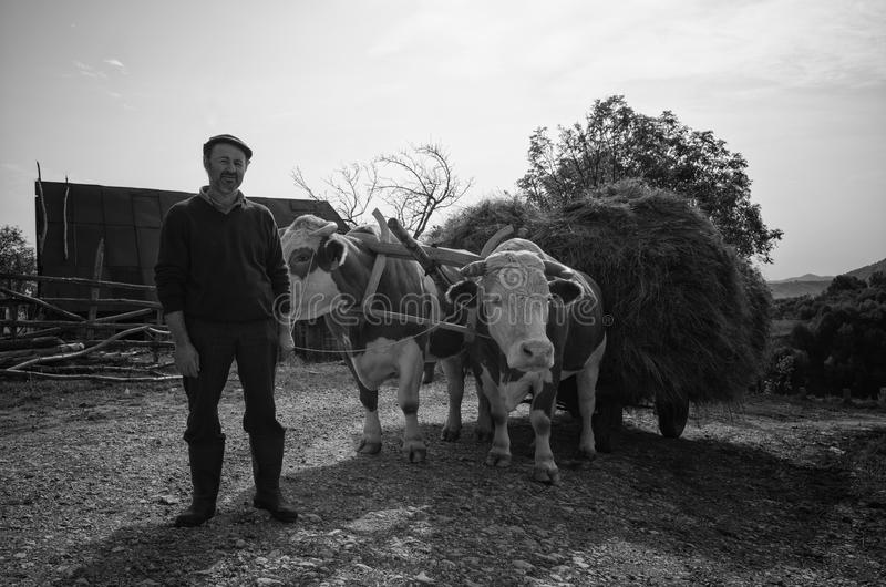 """Bradesti Transylvania, Rumänien †""""Oktober 15, 2016: Rumänskt f arkivfoton"""