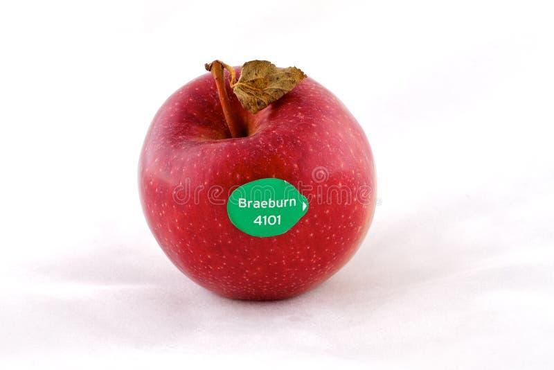 Braeburn Apple royalty free stock photos