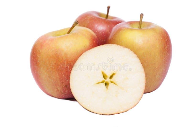 Braeburn apples on a white background stock photo