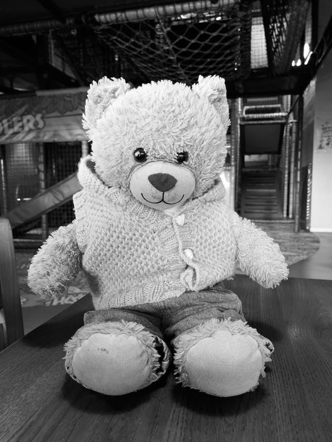 Brafley björnen royaltyfri foto