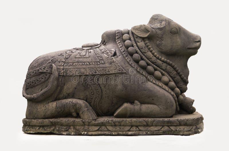 Brahma η αγελάδα πετρών στοκ φωτογραφίες με δικαίωμα ελεύθερης χρήσης