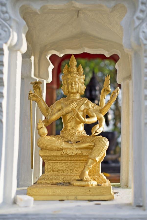 Brahma стоковые фотографии rf