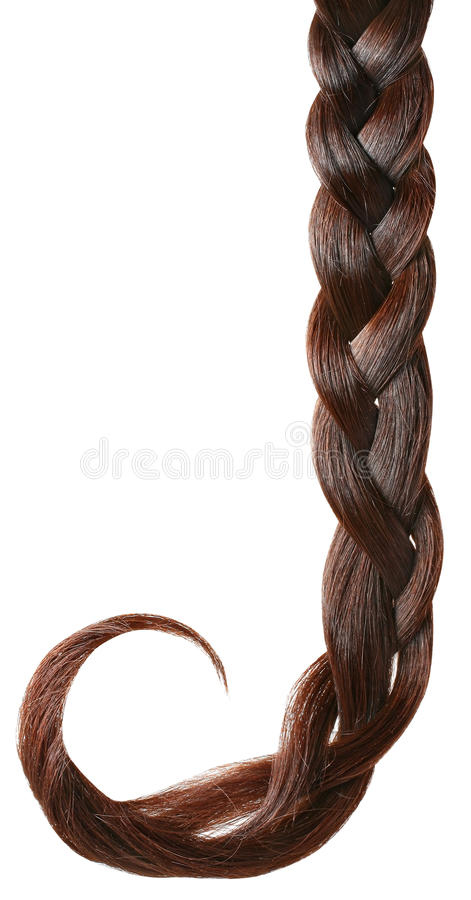 Braid isolated on white. stock photography
